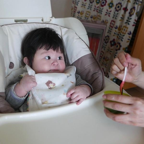 Hotakaくんの離乳食 ほうれん草はお気に入り?